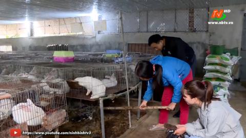 Vì chất lượng cuộc sống: Xử lý chất thải trong nuôi thỏ từ giun trùn quế