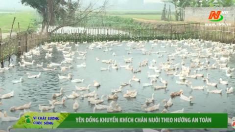 Vì chất lượng cuộc sống: Yên Đồng khuyến khích chăn nuôi theo hướng an toàn