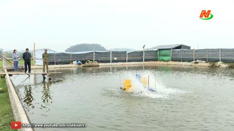 Vì chất lượng cuộc sống: Yên Thành nuôi trồng thủy sản theo hướng an toàn