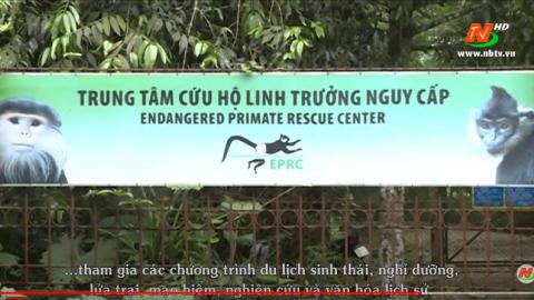 Vườn quốc gia Cúc Phương |Trailer